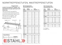Gitterroststufe 1000 x 270 mm 30/10